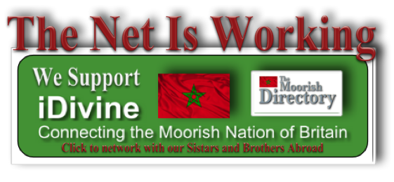 Our Net Is Working Banner