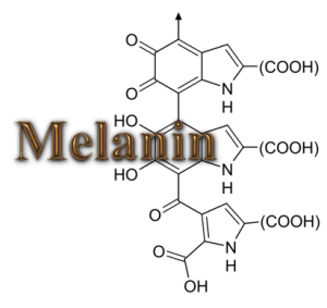 Our Melanin
